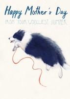 Woolliest Jumper Final (LR) ©2019 Carina Roberts Illustration